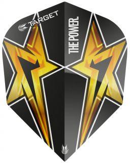 Target Phil Taylor Vision G3 Std.6 Black Star   Darts Warehouse